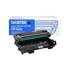 Original Drum Unit Brother DR-6000